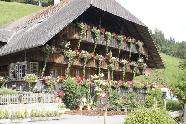 Fahrni's-Bauernhaus-02_DSC0